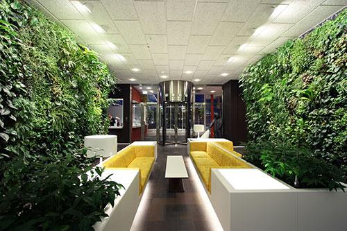 Mô hình văn phòng xanh mang lại lợi ích gì?