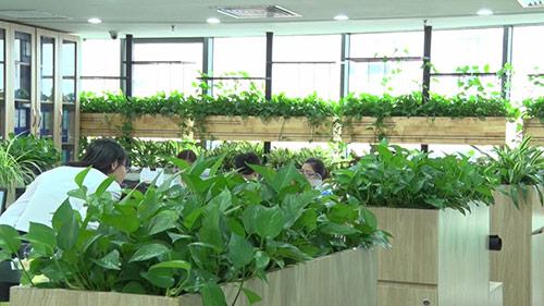 Những ưu điểm của văn phòng xanh